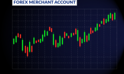 Tips To Manage High risk Merchant Account